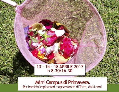 Mini campus di primavera.